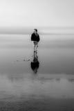Riflessione di pettinatura della spiaggia della ragazza Fotografia Stock