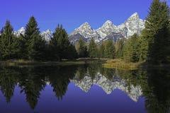 Riflessione di Teton Immagine Stock Libera da Diritti