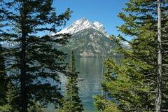 Riflessione di Teton, lago jenny Immagine Stock Libera da Diritti
