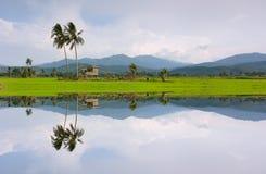 Riflessione di un paesaggio rurale in Kota Marudu, Sabah, Malesia orientale Fotografie Stock Libere da Diritti
