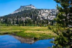 Riflessione di Yosemite Fotografia Stock