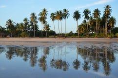 Riflessione, EL Espino, El Salvador di Playa Fotografia Stock