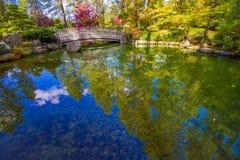 Riflessione giapponese del giardino nella caduta immagini stock