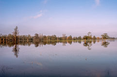 Riflessione gli alberi sull'acqua in sole Fotografie Stock