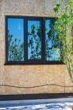 Riflessione luminosa della natura, fuoco selettivo Una riflessione dell'albero nelle finestre ad estate fotografia stock