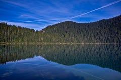 Riflessione nel lago Immagine Stock Libera da Diritti