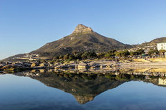 Riflessione nell'acqua della montagna della testa di Lion's a Cape Town, fotografie stock libere da diritti