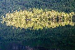 Riflessione soleggiata luminosa della foresta nel lago del higland Fotografia Stock Libera da Diritti