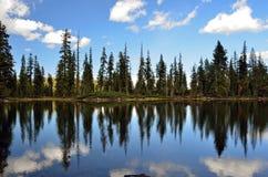 Riflessione sul lago superiore Gumboot Fotografia Stock Libera da Diritti