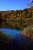 Riflessione sulla superficie dell'acqua Fotografie Stock Libere da Diritti