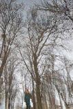 Riflessione in una pozza come in uno specchio: cielo grigio, rami nudi degli alberi, vicolo e la siluetta della persona in vestit Fotografia Stock