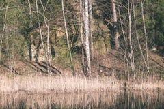 riflessioni degli alberi nel fiume di estate - annata della montagna retro Immagine Stock