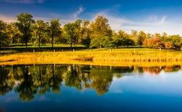 Riflessioni degli alberi nel lago druid, al parco della collina del druido in Baltim Fotografia Stock