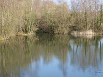 Riflessioni degli alberi sul lago Fotografia Stock