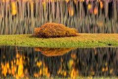 Riflessioni dell'acqua in autunno fotografie stock libere da diritti