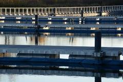 Riflessioni dell'acqua dell'ombra e della luce Fotografia Stock Libera da Diritti