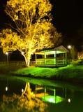 Riflessioni dell'albero e del riparo alla notte Immagine Stock