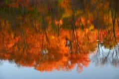 Riflessioni dell'autunno immagini stock libere da diritti