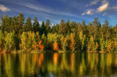 Riflessioni dell'autunno Immagini Stock