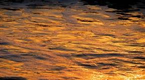 Riflessioni dell'oro su acqua & su gomma piuma Fotografia Stock