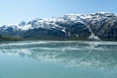 Riflessioni della baia di ghiacciaio Immagini Stock Libere da Diritti