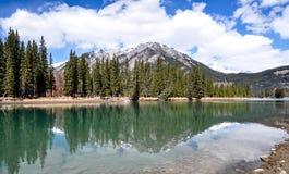 Riflessioni della montagna e della foresta in lago Fotografie Stock