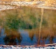 Riflessioni della sorgente dell'onda Fotografie Stock
