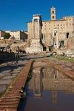 Riflessioni della tribuna romana, Roma fotografia stock