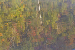Riflessioni di Adirondack di autunno Immagine Stock