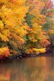 Riflessioni di autunno fotografia stock