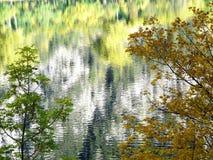 Riflessioni di autunno dei colori del ramo di albero in un lago di Panticosa fotografia stock