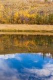 Riflessioni di caduta sulla superficie dell'acqua fotografia stock
