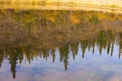 Riflessioni di caduta sulla superficie dell'acqua immagine stock