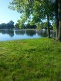 Riflessioni di campeggio degli alberi dell'Ohio del lago Fotografia Stock