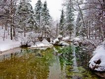 Riflessioni di inverno in una torrente montano fredda, fiume Sava vicino al lago Bohinj, alpi slovene Immagini Stock