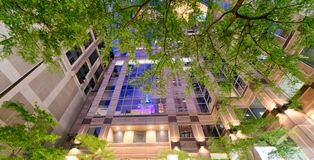 Riflessioni di notte nel grattacielo della città con gli alberi alla notte Fotografia Stock Libera da Diritti