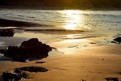 Riflessioni dorate in sabbia bagnata Immagine Stock Libera da Diritti