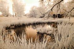 Riflessioni nel lago Immagine infrarossa Fotografia Stock