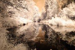 Riflessioni nel lago Immagine infrarossa Immagine Stock Libera da Diritti