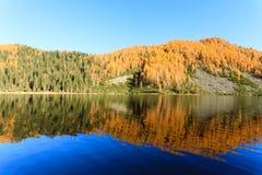 Riflessioni su acqua, panorama di autunno dal lago della montagna Fotografie Stock