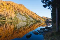 Riflessioni su acqua, panorama di autunno dal lago della montagna Fotografie Stock Libere da Diritti