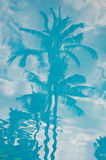 Riflessioni tropicali Fotografia Stock