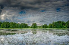 Riflessioni in un lago con il cielo e gli alberi Immagini Stock Libere da Diritti