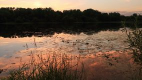 Riflessioni variopinte del cielo in lago al tramonto archivi video