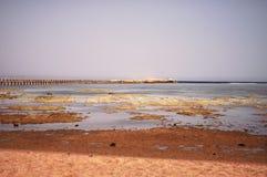 Riflusso del mare Fotografie Stock Libere da Diritti