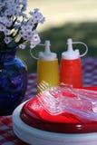 Rifornimenti di picnic Fotografia Stock