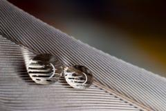 Rifrazione della goccia di acqua, ingrandimento, ottica Fotografia Stock