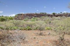Rift Valley falezy, Kenja Obrazy Royalty Free