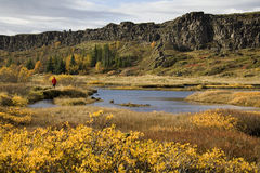 Rift valley at Pingvellir in Iceland Stock Photography