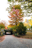 Riftstone-Brücke im Central Park, New York, USA Lizenzfreie Stockfotos